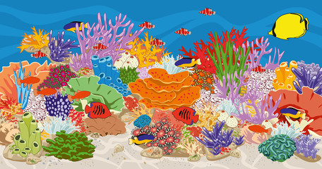 Marine reef saltwater aquarium with fish and corals. Coral reef in ocean