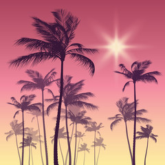 Silhouette of palm tree and sunset sky. Vector illustration