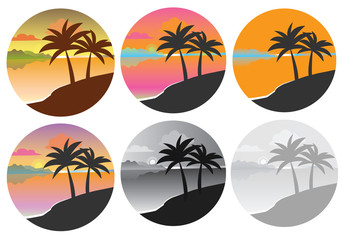 Icon with a palm tree in a circle. Set of icons with palm trees. Graphic vector image of palm trees