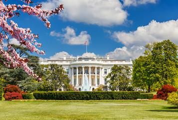 The White House at spring, Washington DC