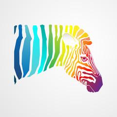Rainbow zebra.