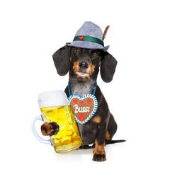bavarian  oktoberfest  oktoberfest  beer dachshund sausage dog