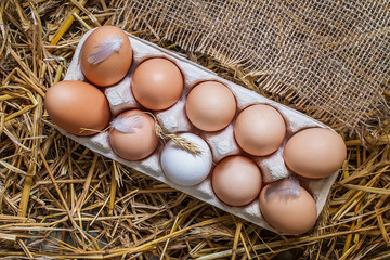 chicken eggs in a tray and a hay closeup