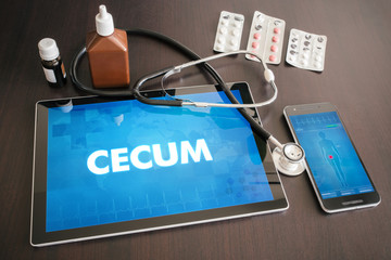 Cecum (gastrointestinal disease related organ) diagnosis medical concept on tablet screen with stethoscope