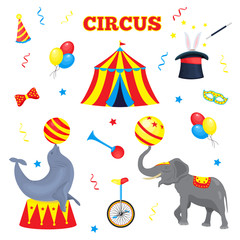 Set of vector circus elements. A collection of circus tent, balloon, horn, hat, magic stick, bow tie, monocycle, serpentine, circus animal elephant and seal with ball for the design tickets, brochures