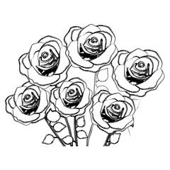 silhouette roses plants icon, vector illustraction design