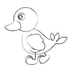 figure duck walking icon, vector illustraction design