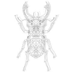 Beetle. Hand drawn sketch.