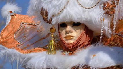 c'est le printemps, vive le carnaval d'Annecy !