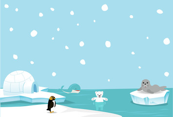 Artic animal background