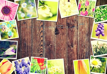 Spring floral frame made of pictures with plants and flowers on brown wooden background.