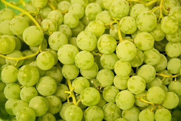 Cluster of Green Grapes; close-up; fresh fruit