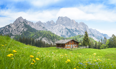Traditional austrian alpine cabin, Salzburger Land, Austria Wall mural