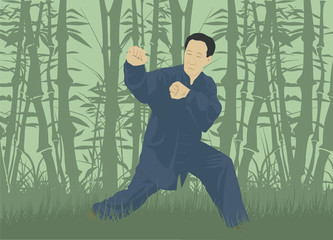 The man demonstrates the technique of Kung Fu, against the background of the forest.