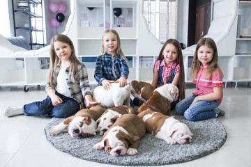 Happy kids with puppies of English bulldog on the floor