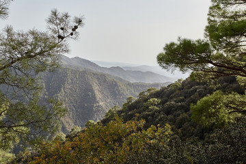 Beautiful mountain landscape, with mountain peaks covered with forest. Troodos, Cyprus