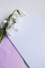 Beautiful white snowdrops with clear paper on white background