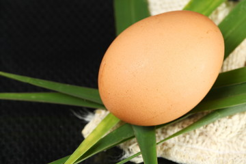 The chicken egg put on the old sack and cogon grass leafs represent the raw food material and food concept related idea.