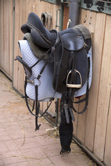 Leather saddle for equestrian sport