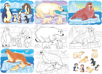 Set of cute arctic animals. Coloring page. Illustration for children