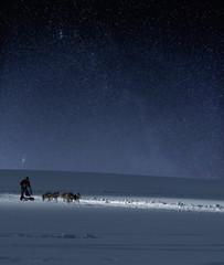 Photo sur Aluminium Arctique Hundeschlitten vor Sternenhimmel