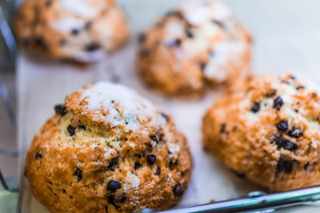 Sugar scones with chocolate or blueberries closeup
