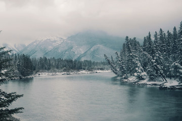 Lake, snowcapped mountains and woodland