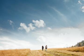 Two mans walk on golden field under blue sky