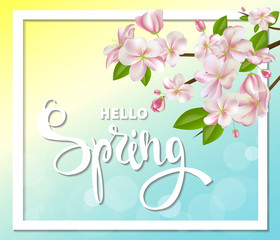 Hello spring background with cherry blossoms, leaves and branches.