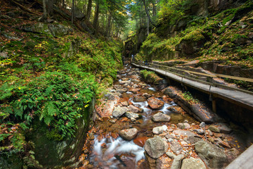 Wooden walkway and steps along the Flume Gorge in Franconia Notch State Park, New Hampshire, USA