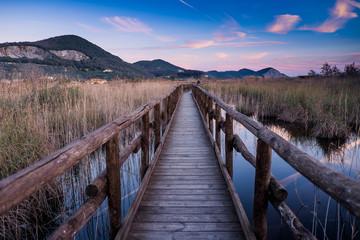 Massaciuccoli, Lucca, Tuscany, Italy - Nature Reserve Oasis Lipu