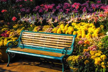 Chairs in the flower garden