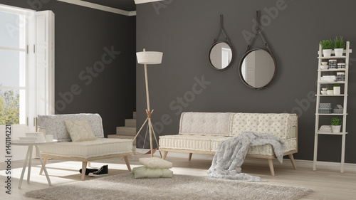 Scandinavian Living Room With Couch Armchair And Soft Fur Rug Minimalist White And Gray