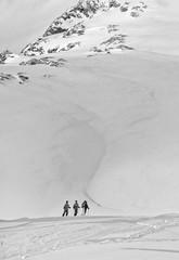 four skier on the background of mountains - Kaprun, Austria