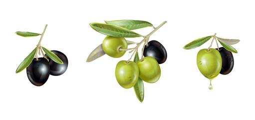 Olive realistic set
