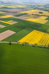 Foto op Canvas Luchtfoto aerial view of the harvest fields