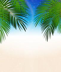 Palm Leaf Vector Background Illustration