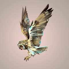 Painted bright isolated flying owl