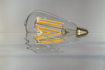 Captures in light bulb