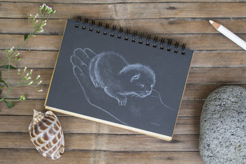 Newborn kitty in hand hand-drawn illustration. Cat by white chalk on black paper.