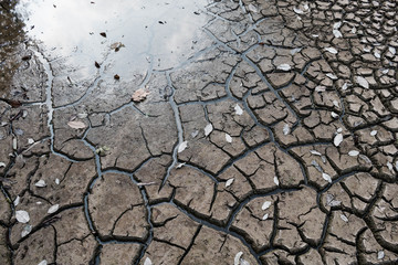 Dry ground waiting for water, Drought concept.