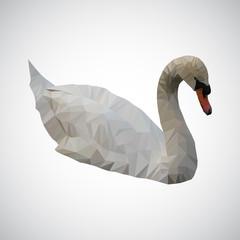 beautiful white swan low polygonal. Vector illustration
