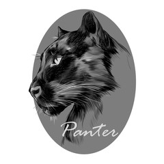 the head is black Panther's profile looking into the distance, graphics sketch vector black and white pattern on the grey circle