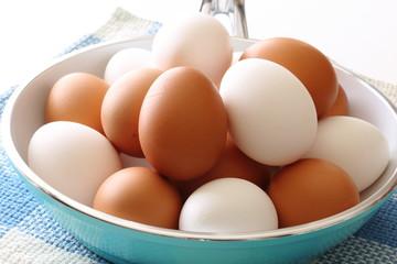 鶏卵 egg