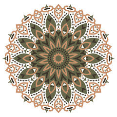 Color mandala vector ethnic pattern, round symmetrical