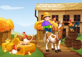 Farmer riding horse in the farm