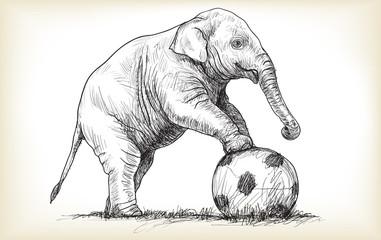 elephant playing football, sketch free hand draw illustration