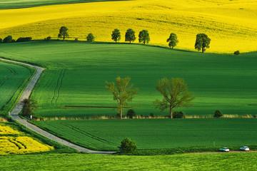 Spring landscape of South Moravia, Moravia, South Moravia, Czech republic