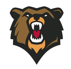 Vector bear head