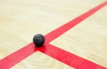 squash ball on the court